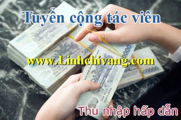 cong tac vien dai ly my pham linh chi vang